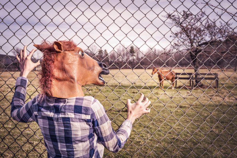 tentative d'attaque xsrf par un cheval